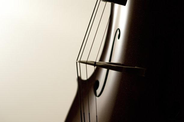大提琴弦乐器特写