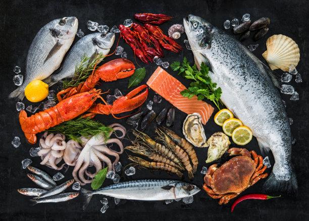 海鲜鱼类摄影