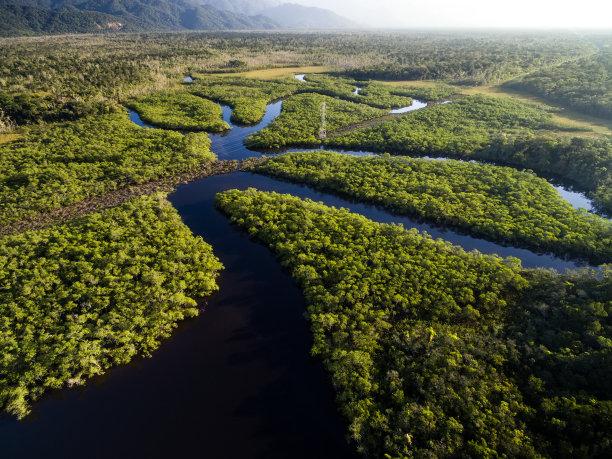 巴西雨林航拍视角