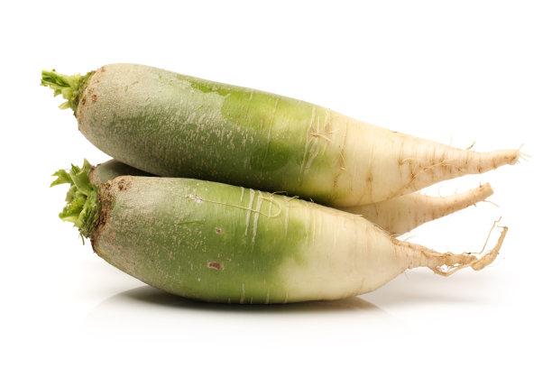 萝卜绿色白色背景