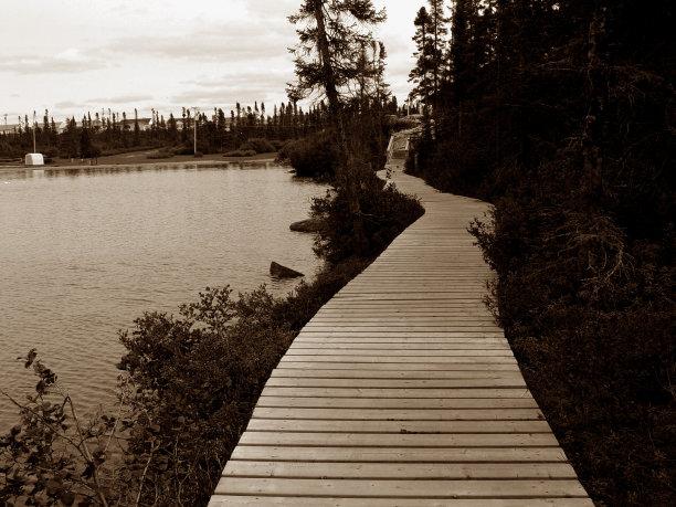 小路,池塘,个人随身用品