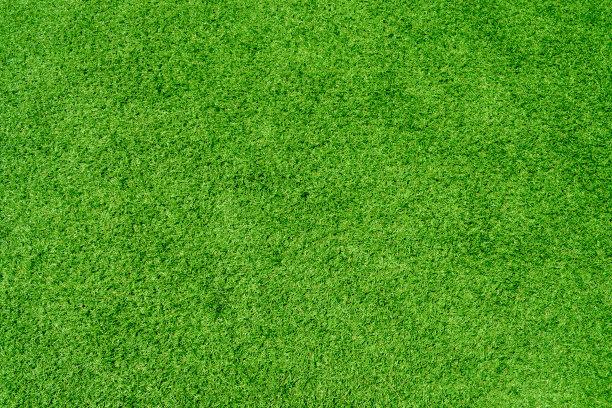 人造草皮草草皮