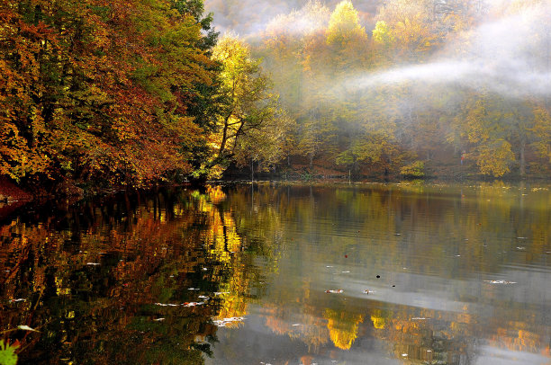 湖,地形,秋天