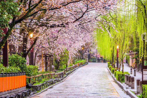 京都府的春天