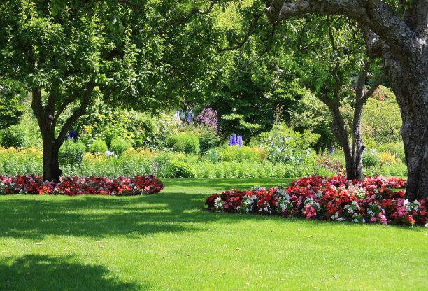 夏天的户外园林