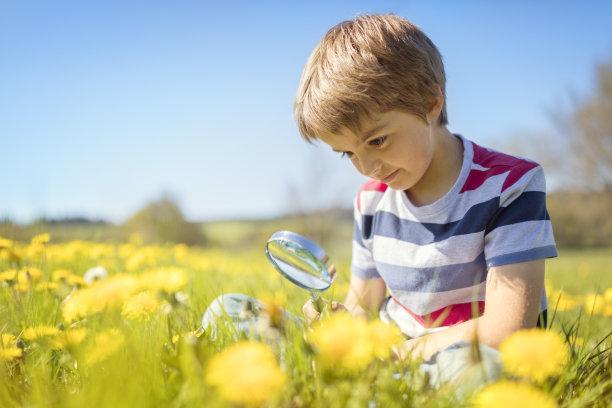 儿童在草地使用放大镜