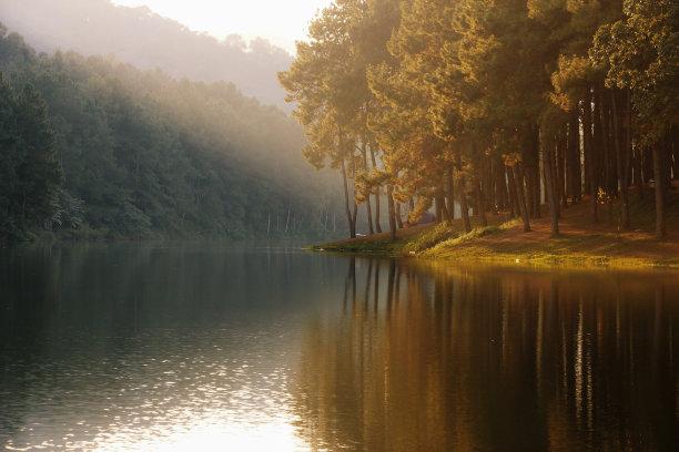 湖,地形,水