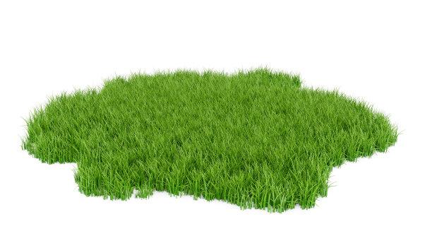 草田地三维图形