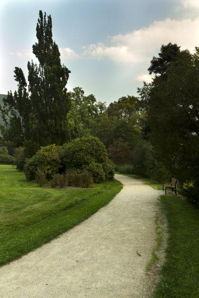 公园,垂直画幅,美