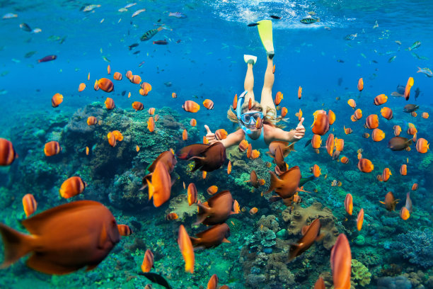 在礁石浮潜