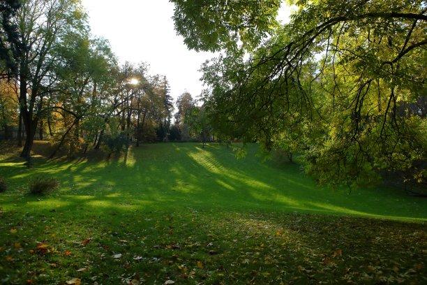 公园,在之间,伦敦城