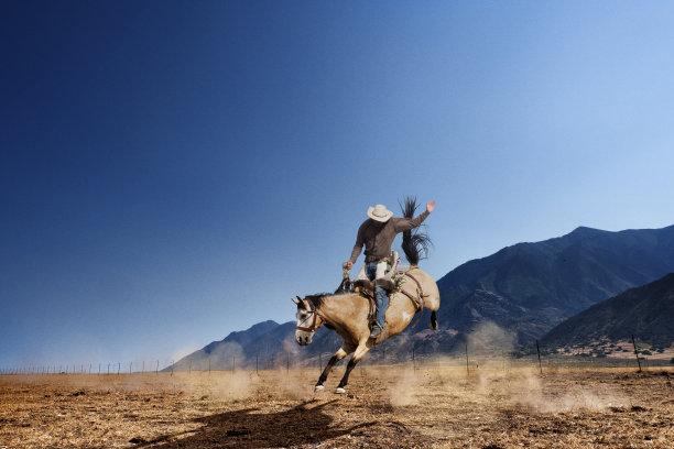 驯野马竞技赛马草原