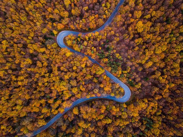 航拍视角秋天路