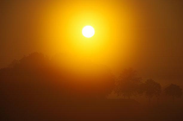 黎明,多样,草原