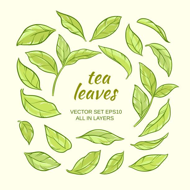 茶叶自然艺术