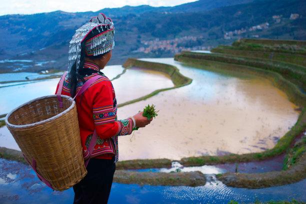 中国梯田图片