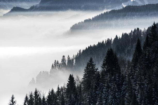 雪巴伐利亚冬天
