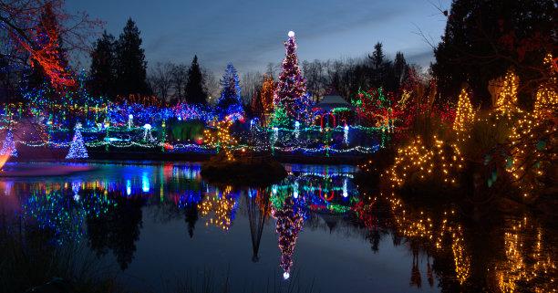 加拿大圣诞小彩灯传统节日