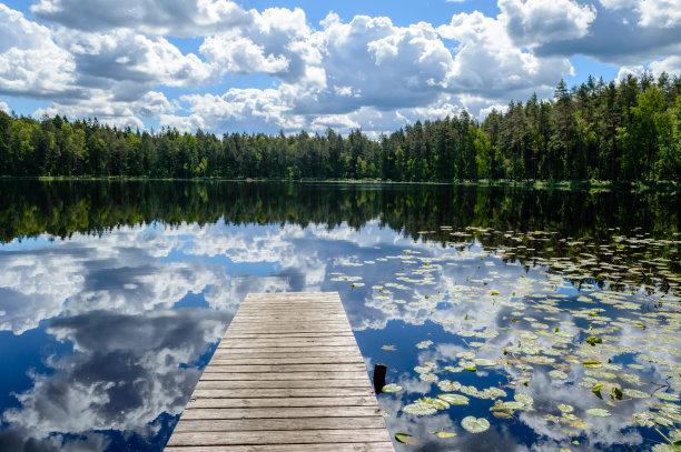 夏天,湖,河流