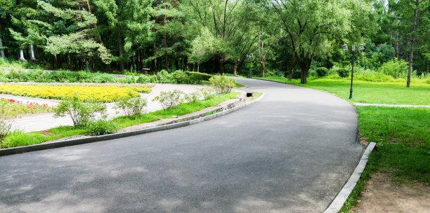 公园小路摄影