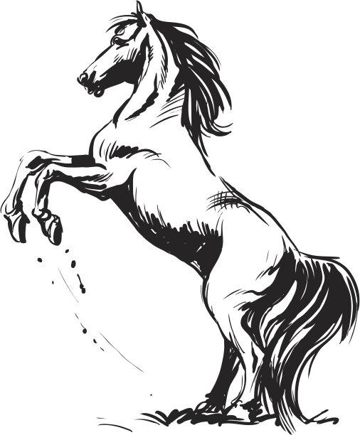 马绘画插图草图