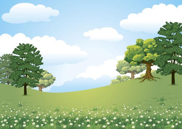 自然绿色草