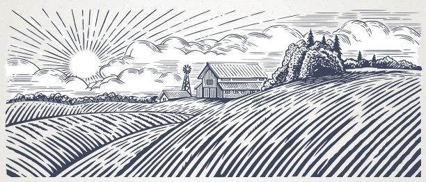 地形农场美