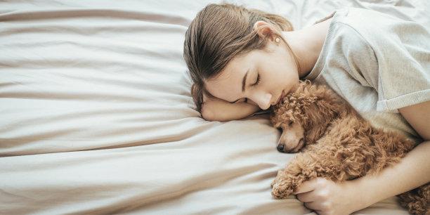 睡着的狗和女孩
