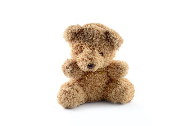 寂寞的一只熊