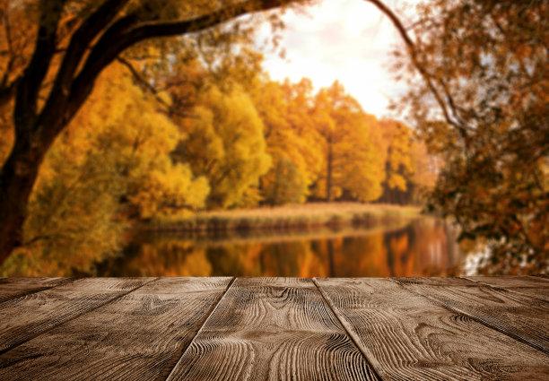 木板上的风景