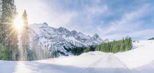 雪冬天阿尔卑斯山脉