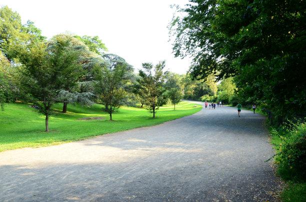 通道地毯,小路,园林