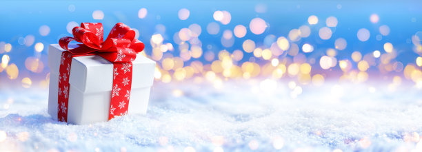 雪地里的礼物