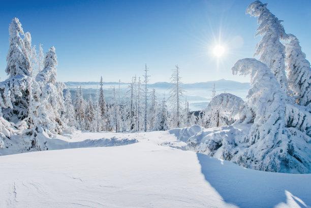 冬天阳光雪景