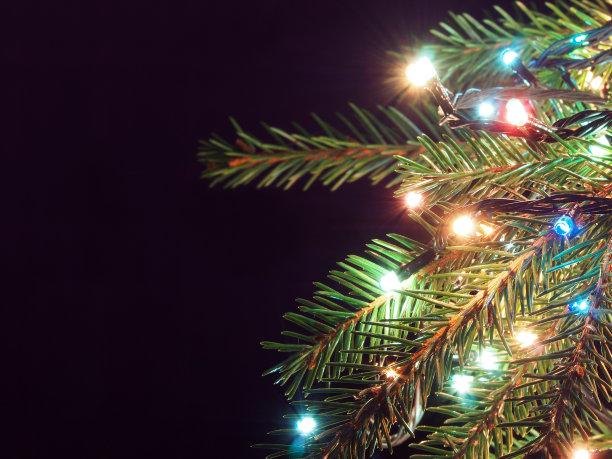 圣诞树暗色背景