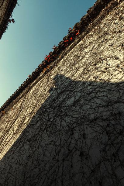 清朝屋顶垂直画幅