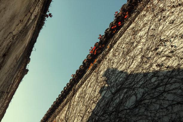 屋顶清朝灵性