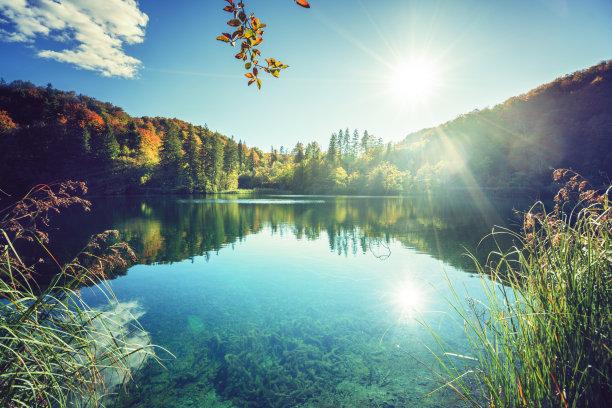 湖,克罗地亚,森林