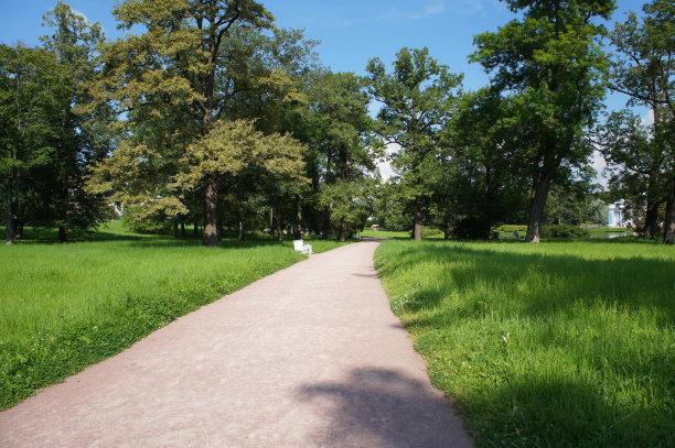 公园,夏天,小路