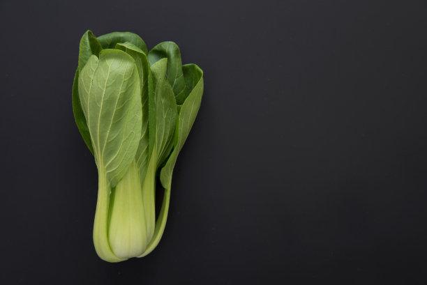 油菜留白水平画幅
