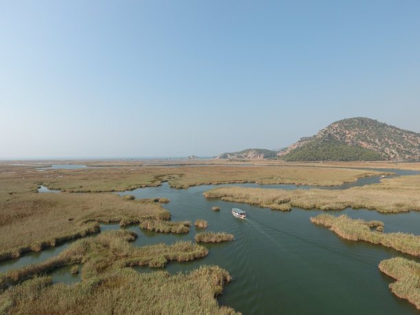达尔扬河流三角洲