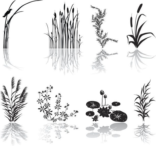 湿地计算机图标黑色