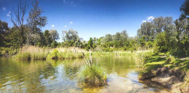 国家公园池塘多瑙河谷