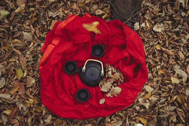 秋天树下的茶壶