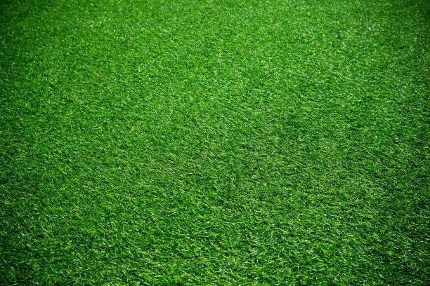 人造绿色草地