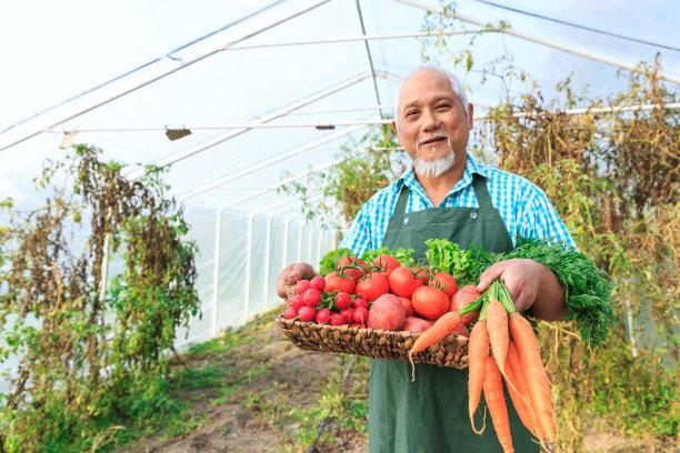 农民蔬菜篮子