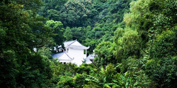 森林中房屋