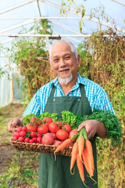 农民蔬菜图片