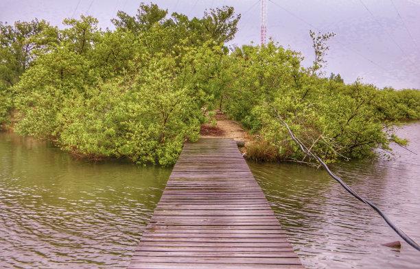 桥,小的,木制