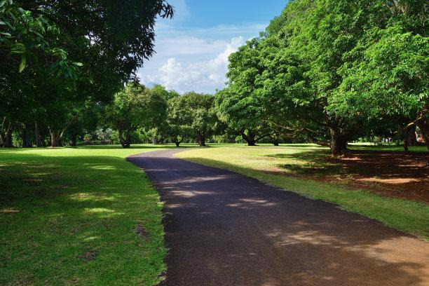 毛里求斯,植物园,草坪